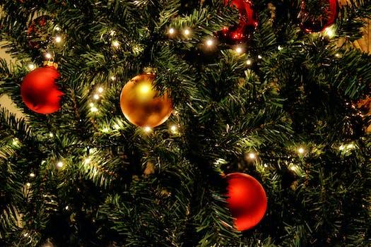 christmas tree photos free