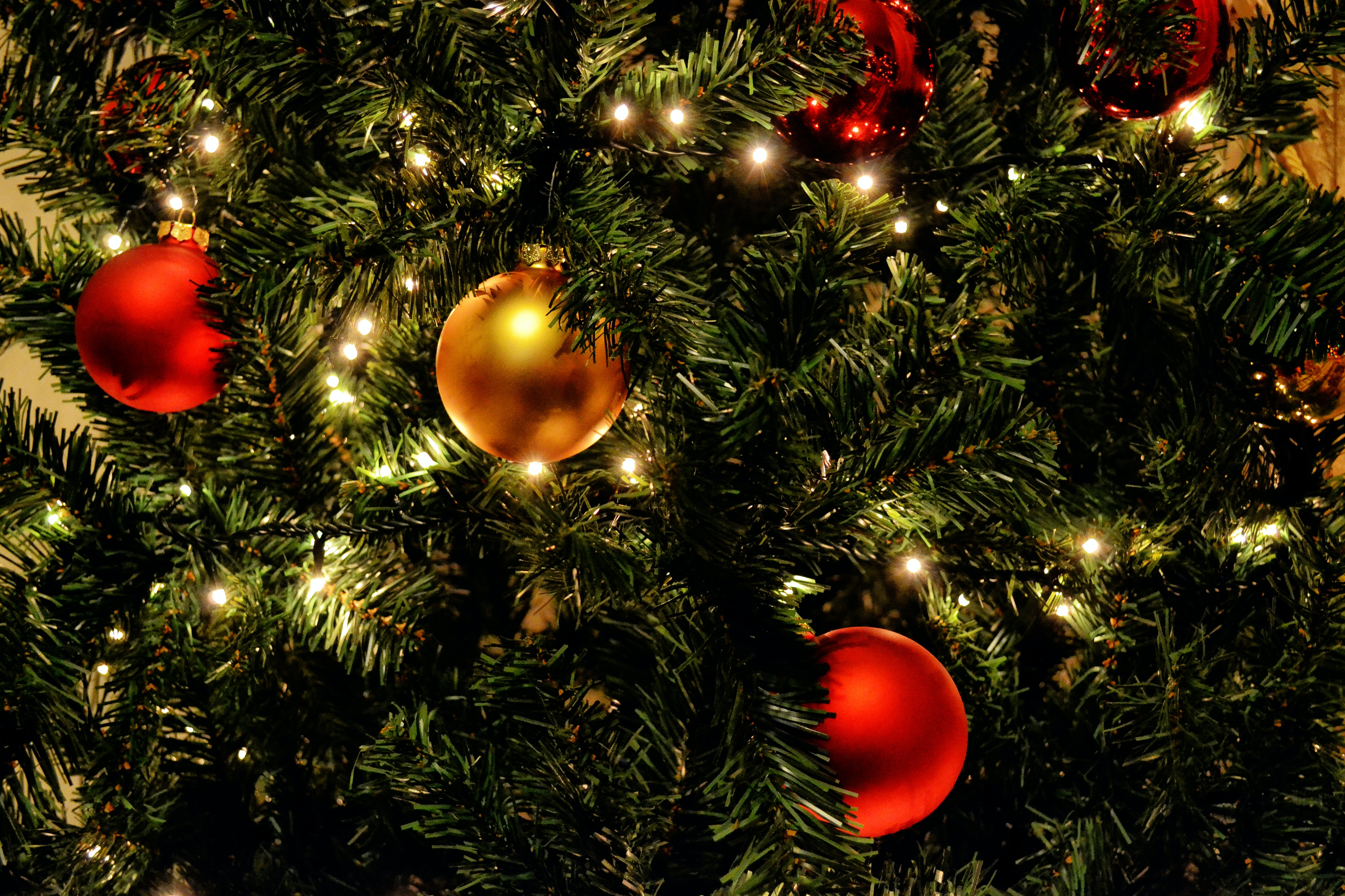 Green Christmas Tree With Red Baubles Free Stock Photo