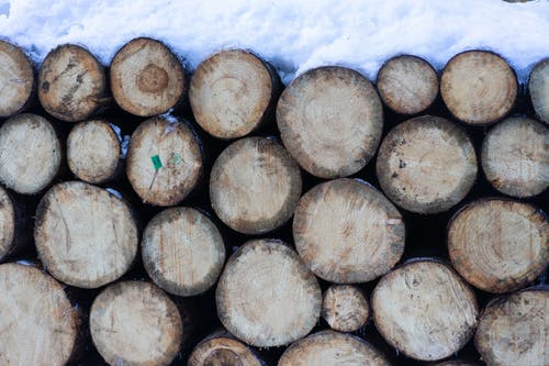 Brown Wooden Logs Covered With Snow