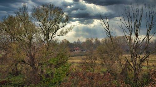 Ảnh lưu trữ miễn phí về Bầu trời tối, sự hình thành mây, thời tiết xấu