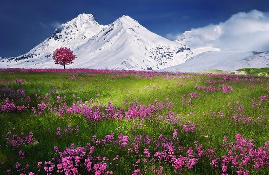 Nature wallpaper of snow, landscape, nature, relaxation