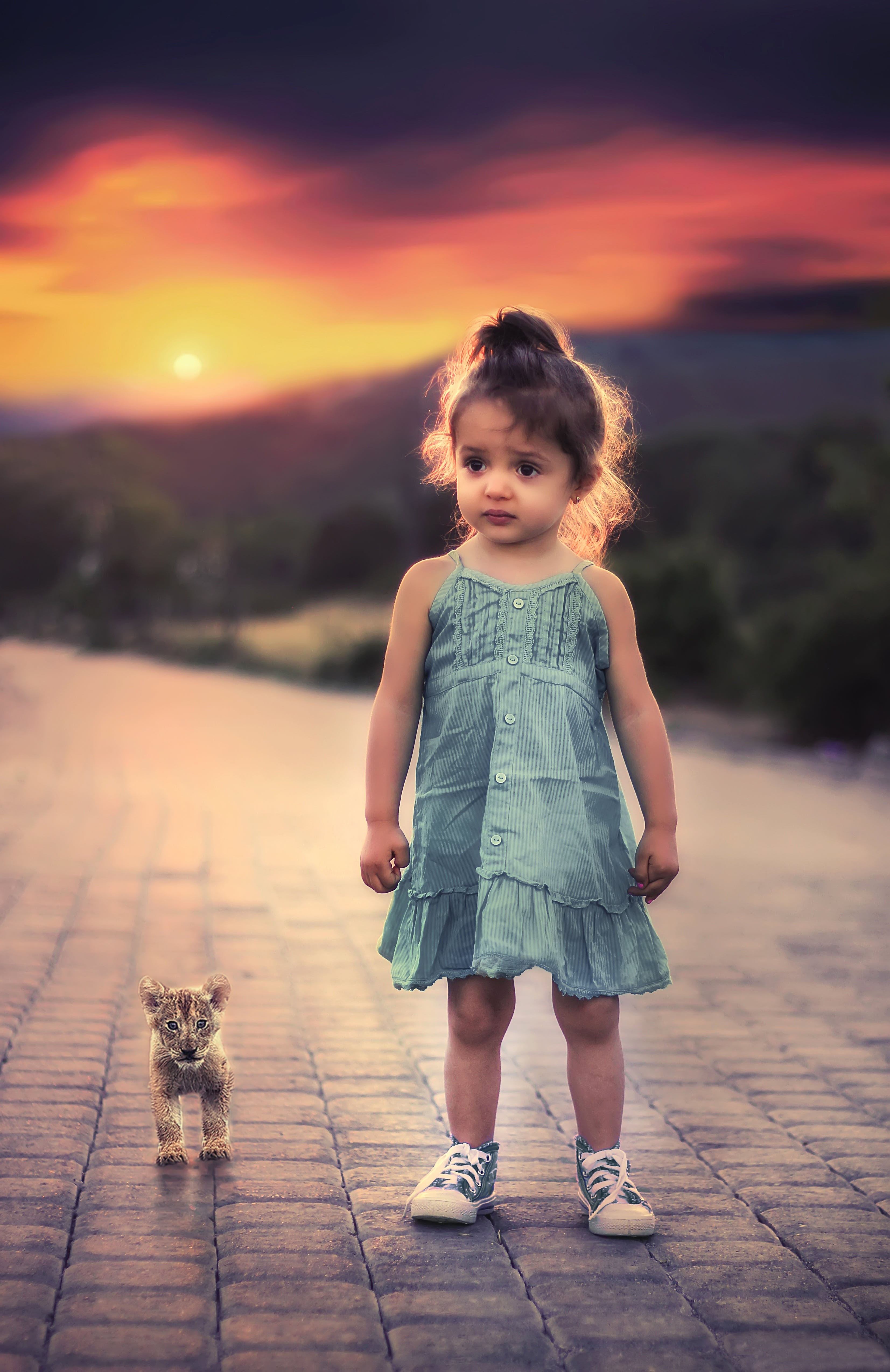 Toddler Girl Standing Beside Lion Cub