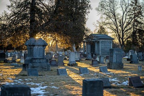 Gratis lagerfoto af begravelse, græsmark, grav, gravsten