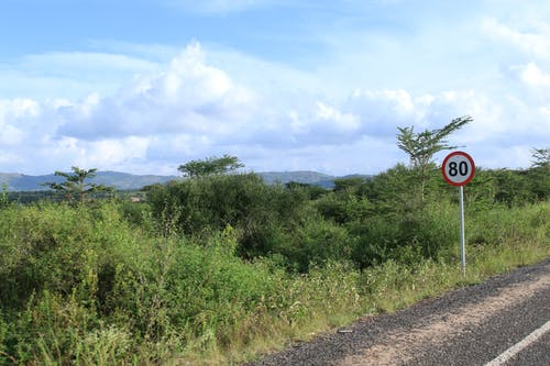 Free stock photo of 80KM/H, acacia, Kenyan roads, road signs