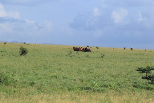 Free stock photo of farming, grassland, tractor