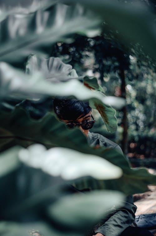 Základová fotografie zdarma na téma fotografie přírody, muž, na výšku, portrét