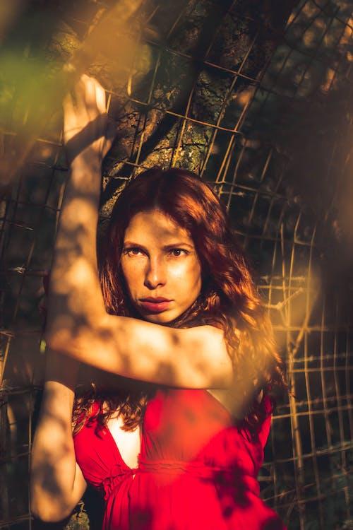 Základová fotografie zdarma na téma červené šaty, na výšku, sluneční světlo, západ slunce