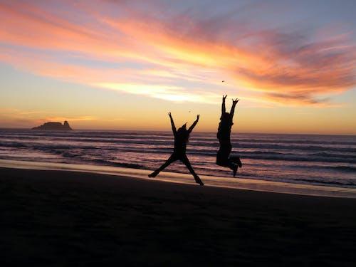 Free stock photo of beach goers