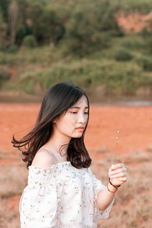 アジアの女性, 人, 女性, 美の無料の写真素材