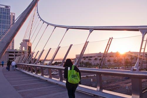 Free stock photo of architectural design, architecture, bridge