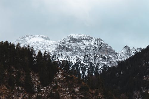 Ingyenes stockfotó ég, fák, hegy, hó témában