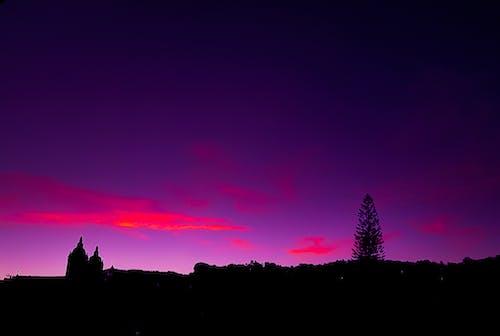 Free stock photo of black, brazil, horizon, pink