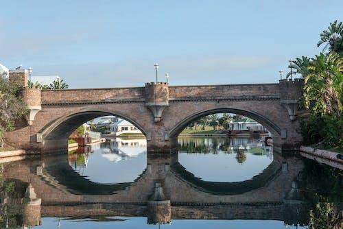 Foto d'estoc gratuïta de canals, pont, rius, vida al mar
