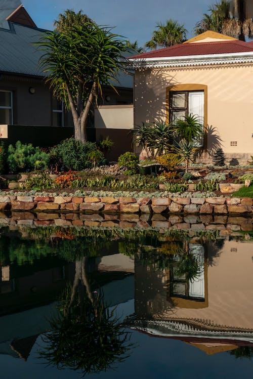 Foto d'estoc gratuïta de aigua amant, canals, cases, jardí