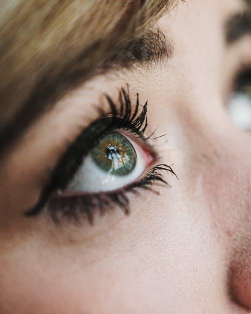 Gratis stockfoto met close-up, detailopname, eyeliner, make-up