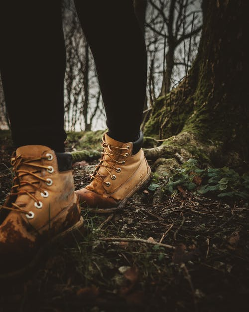 Person Wearing Brown Leather Boots Standing on Brown Dried Leaves