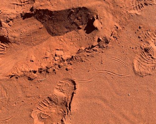 Free stock photo of desert, footprints, red sand