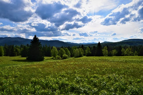 Free stock photo of Adirondacks, clouds, colors, grass