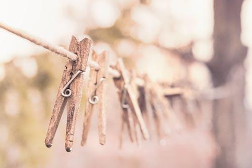 Základová fotografie zdarma na téma dřevěný, kolíčky na prádlo, kolíky na šaty, mytí