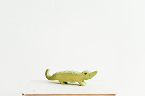 Green Wooden Crocodile on Book