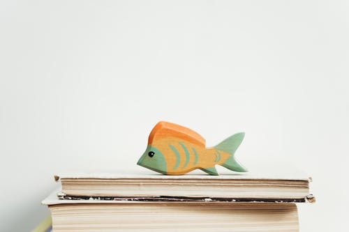 Green and Orange Wooden Fish Toy