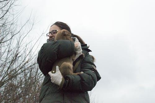 Free stock photo of cute, dog, girl, love