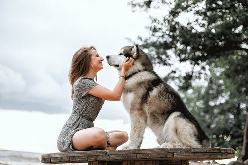 Photo of Smiling Woman in Floral Dress Sitting on Wooden Platform While Petting a Dog