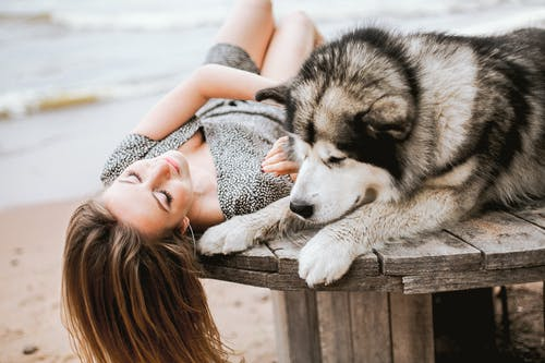 Selective Focus Photo of Woman in Floral Dress Lying Down on Wooden Platform Next to Her Dog
