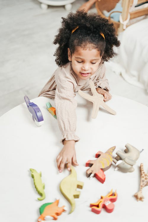 Menina Brincando Com Brinquedos De Madeira