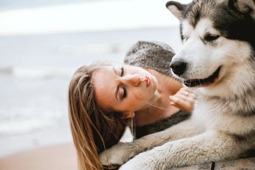 Woman Hugging White and Black Siberian Husky