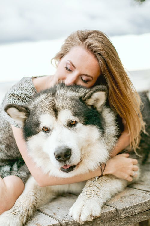 Selective Focus Photo of Woman in Floral Dress Hugging Her Dog  With Her Eyes Closed While Sitting on a Wooden Platform