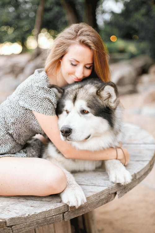 Woman in Gray Sweater Hugging Black and White Siberian Husky Puppy