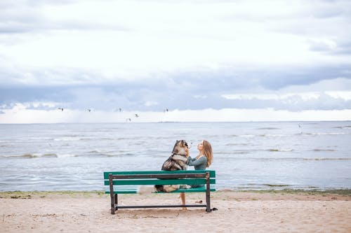Woman in Brown Jacket Sitting on Blue Bench on Beach with Dog