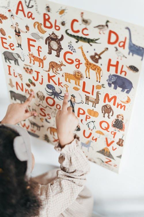 คลังภาพถ่ายฟรี ของ การศึกษา, การเรียนรู้, ความไร้เดียงสา, ตัวอักษร