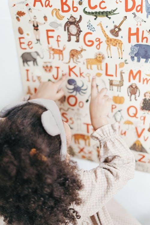 Immagine gratuita di alfabeto, animali, apprendimento, asilo