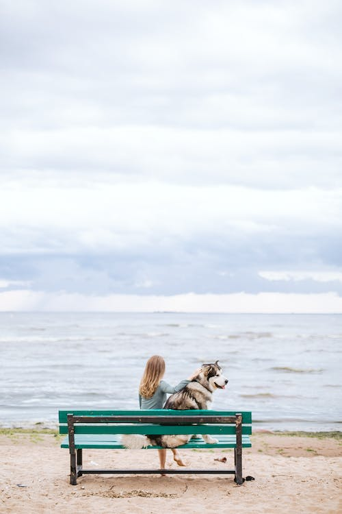 Woman Sitting In A Beach Bench With Her Pet