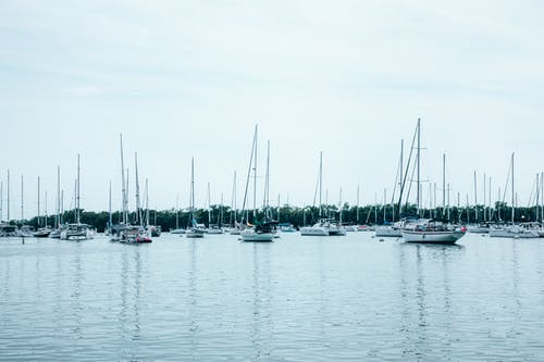 Photo of White Boats