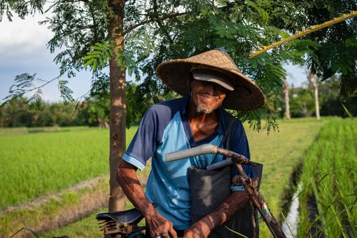 Man In Blue T-shirt And Straw Hat