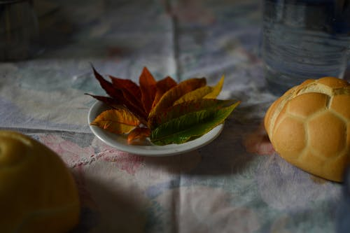 Free stock photo of autumn, italy, lunch, pastry