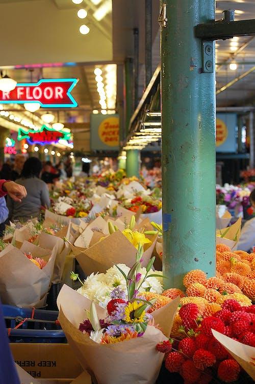 Základová fotografie zdarma na téma květiny, Seattle