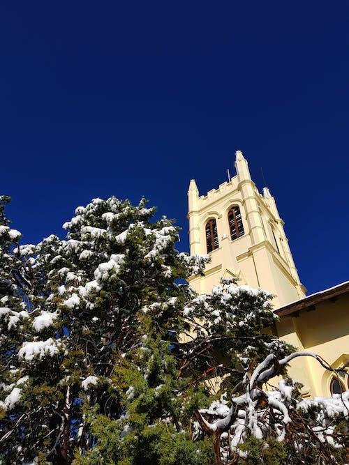 Free stock photo of 4k wallpaper, heavy snowfall, landscape photography, nature photography