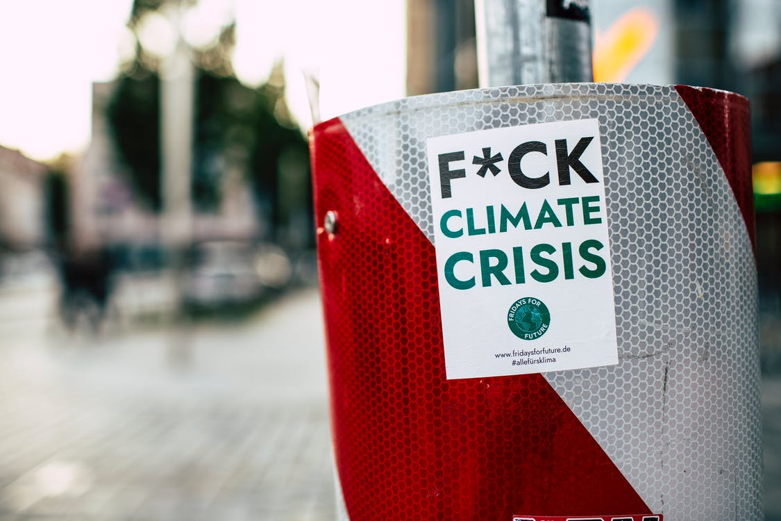 ambiente, attivista, cambiamento climatico