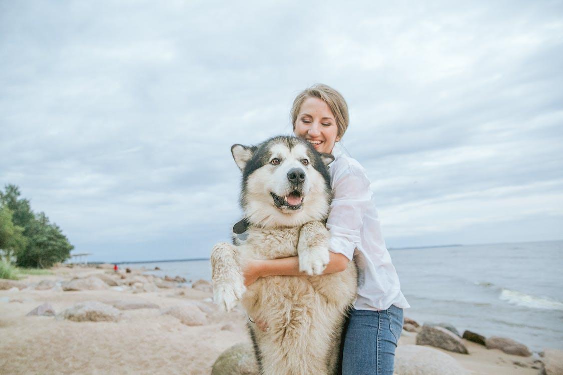 Woman Hugging Her Siberian Husky