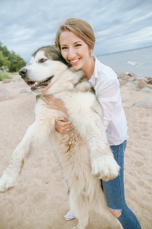 Женщина держит щенка белого сибирского хаски