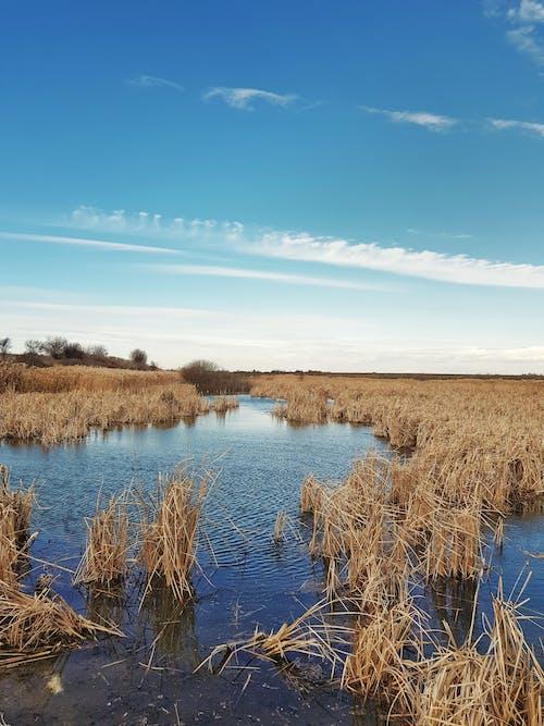 Free stock photo of beautiful, beautiful landscape, beauty of nature, blue