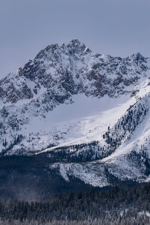 Darmowe zdjęcie z galerii z błękitne góry, drzewa, góra, krajobraz