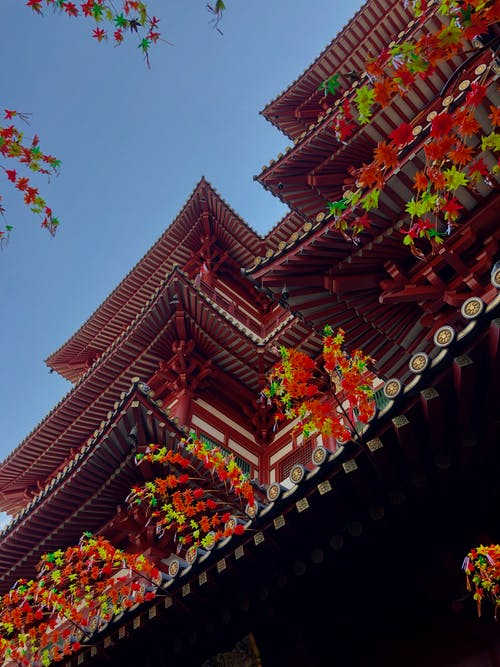 Free stock photo of belief, Buddha Tooth Relic Temple, china town, chinatown