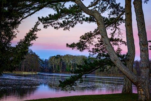 Kostenloses Stock Foto zu blaue himmel, blauer himmel, blick auf den sonnenuntergang