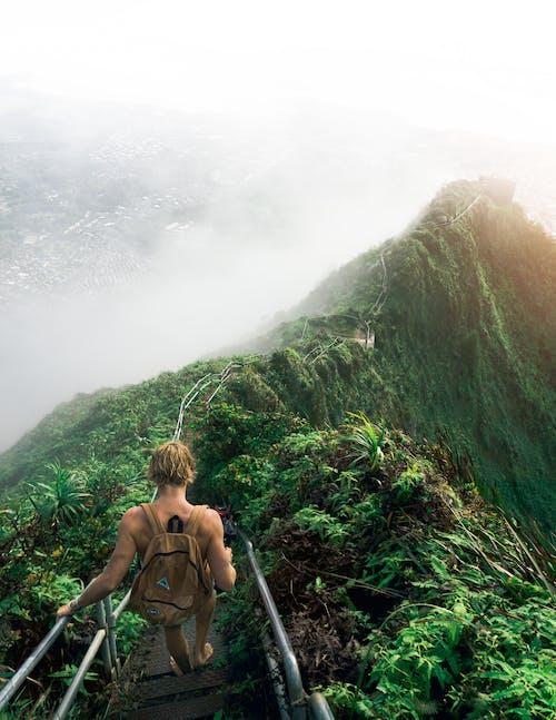 Imagine de stoc gratuită din aventură, călător, călătorie, cale