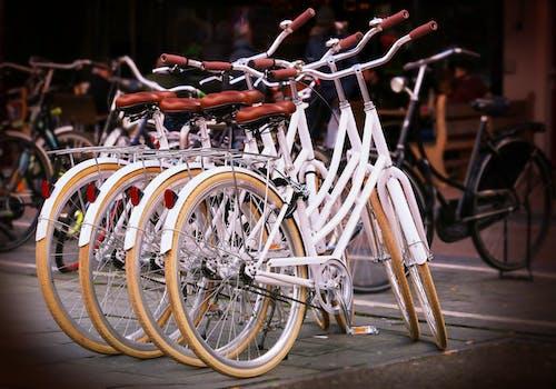 Základová fotografie zdarma na téma bílá, doprava, jízda, jízdní kola